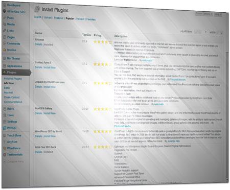Choosing WordPress Plugins - Nancy N. Wilson