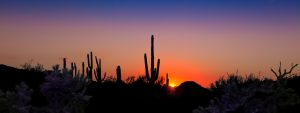 Arizona Desert - My Inspiration for writing